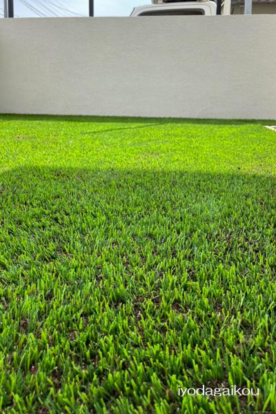 人工芝の特徴を活かし、更に良くなるためにはを研究中