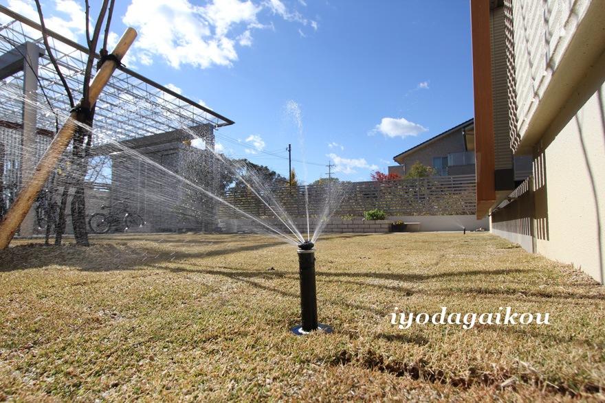 お庭には自動で水巻きしてくれるスプリンクラー